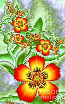 Fractal Flowers by Galina Lavrova