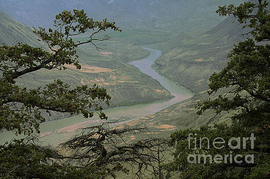 Roland Stanke - Fraser River