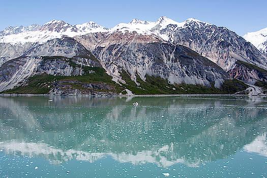 Glacier Bay Reflections by Ramunas Bruzas