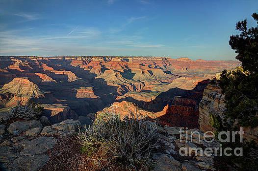 Wayne Moran - Grand Canyon National Park Spring Sunset