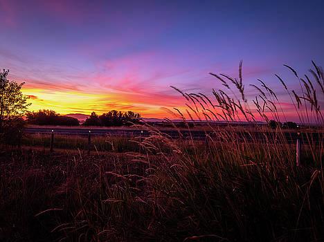 Grangeville Sunset by Michele James