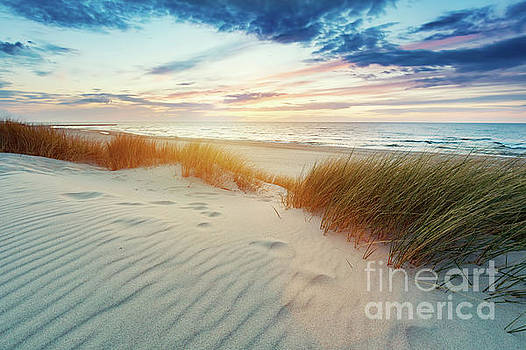 Grassy dunes and the Baltic sea at sunset by Michal Bednarek