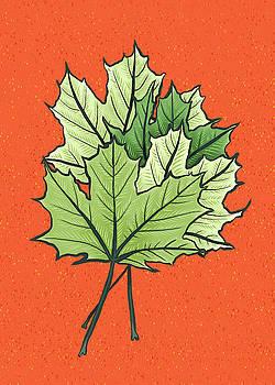 Green Maple Leaves On Vibrant Orange by Boriana Giormova