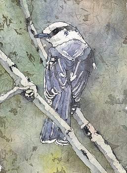 Grey jay by Ruth Kamenev