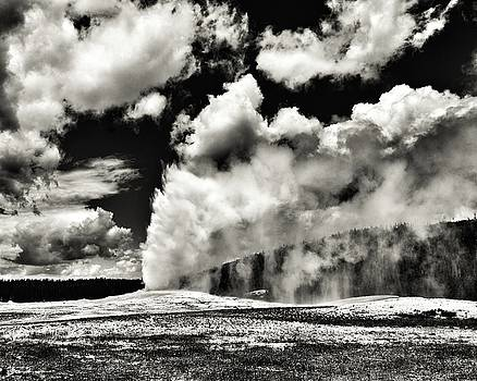 In Yellowstone by Bharat Rao