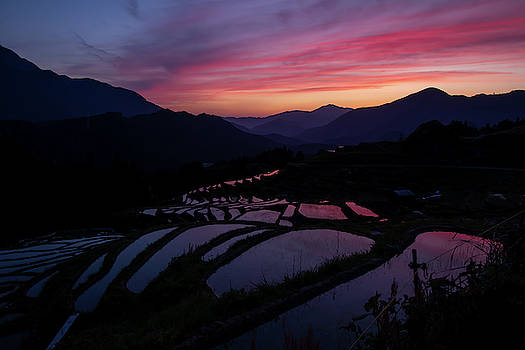 Japanese Rice Paddies at sunset by Nate Richards