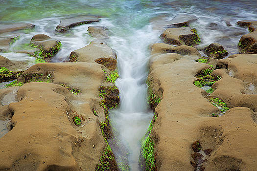 La Jolla Tide Pools by Jackie Novak