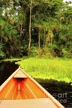 Lake Marasha by Cassandra Buckley