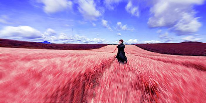 Les Bles Roses by Jennifer Orhelys