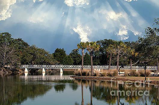 Dale Powell - Magnolia Bridge