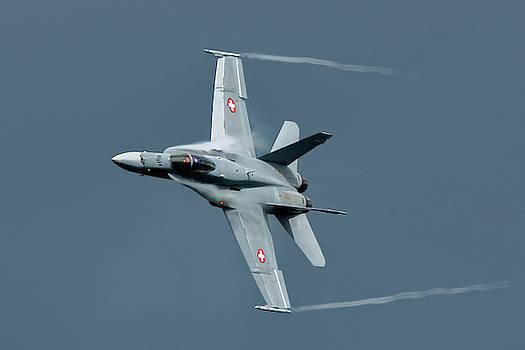 McDonnell Douglas F/A-18C Hornet at RAF Cosford 2019 by Scott Lyons