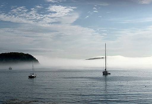 Morning Mist On Frenchman's Bay by Dick Goodman