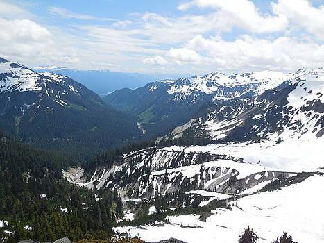 Mount Baker North Cascades National Park by Art Sandi