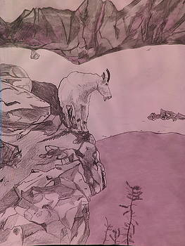 Mountain Goat by Michael Hoback