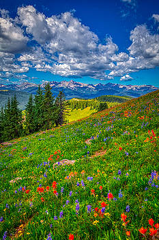 Mt of the Holy Cross from Shrine Ridge by Fred J Lord