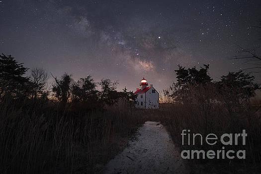 Night Light  by Michael Ver Sprill