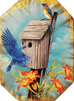 North Carolina Blue Bird by Jose Renan Herrera