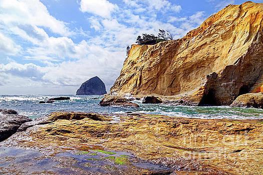 Ocean seascape rock shelf below tall orange rock cliffs Cape Kiw by Robert C Paulson Jr