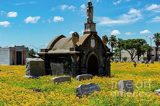 Old City Cemetery by Diana Mary Sharpton