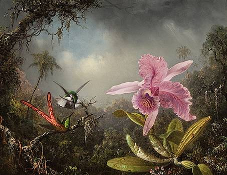 Orchid with Two Hummingbirds  by MotionAge Designs
