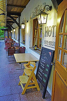 Outdoor Cafe Of The Best Western Hotel In The Black Forest Area by Richard Rosenshein