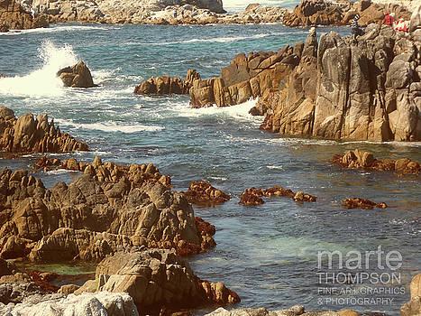 Pacific Grove Rocks by Marte Thompson