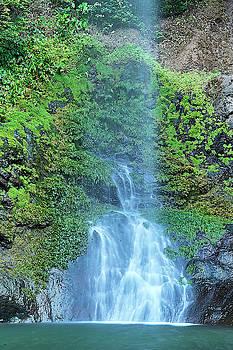 Panama Highlands Waterfall by Jackson Ball