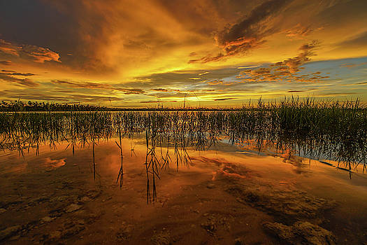 Picayune Fire Sky by Joey Waves