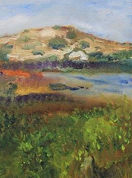 Pilgrim Lake by Michael Helfen