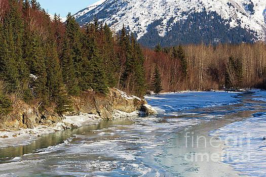 Portage Creek Portage Glacier Highway, Alaska by Louise Heusinkveld