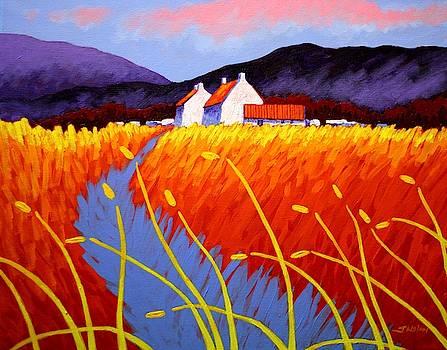 Purple Hills  by John  Nolan