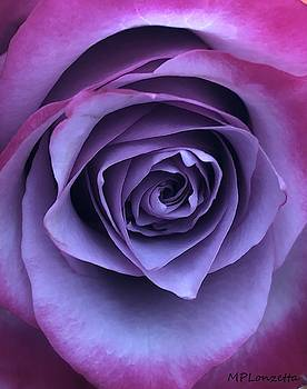 Purple Rose by Marian Palucci-Lonzetta