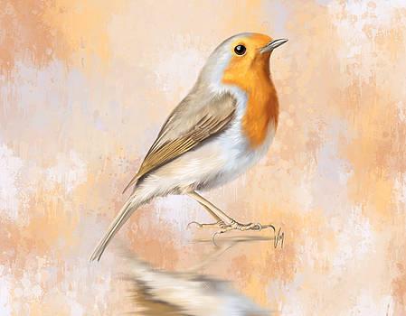 Robin by Veronica Minozzi
