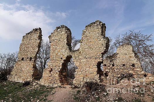 Ruins of the Pravda castle by Michal Boubin
