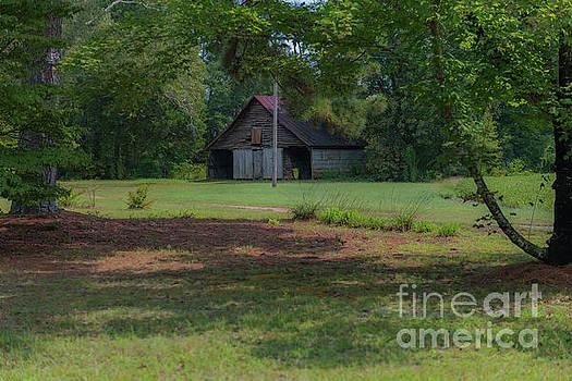 Dale Powell - Rural South Carolina
