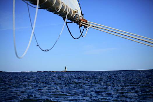 Sail Away by Karol Livote