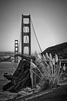 Melanie Viola - SAN FRANCISCO Golden Gate Bridge