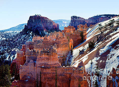 Scraggly Geoformations at Bryce Canyon by Wernher Krutein