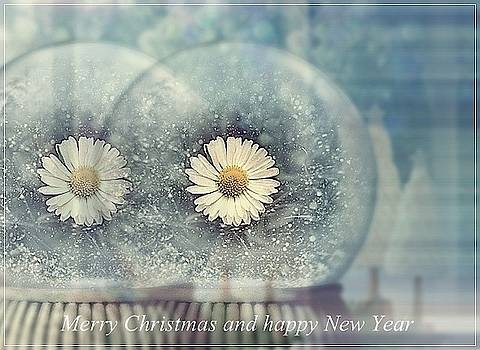 Season's greetings by Marija Djedovic