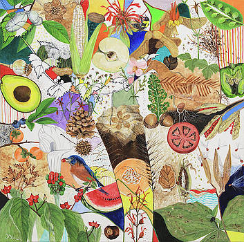 Seeds and Fossils by Trena McNabb