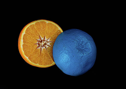 Slices of  blue and orange fresh Citrus orange fruit by Michalakis Ppalis