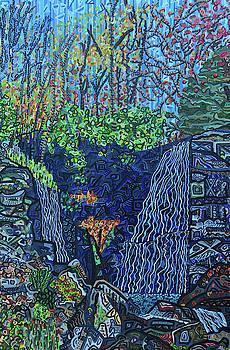 Soco Falls by Micah Mullen