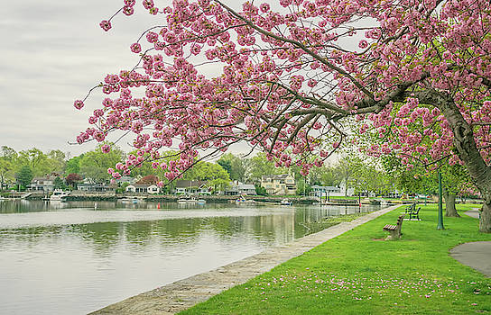 Spring at the Harbor by June Marie Sobrito