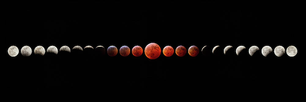 Super Blood Wolf Moon Eclipse by Greg Booher