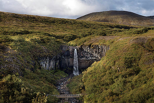RicardMN Photography - Svartifoss waterfall in Iceland