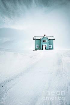 Take Me Home by Evelina Kremsdorf