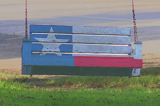 Texas 2 seat swing by Warren Gale