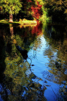 The pond at Inglewood House by Jeremy Lavender Photography