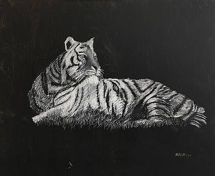 Richard Le Page - Tiger