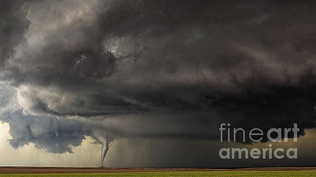 Tornado by Patti Schulze